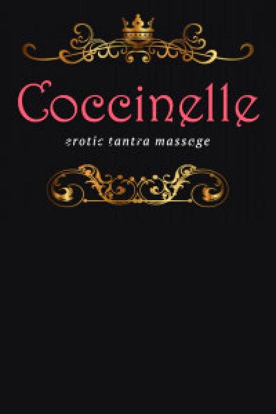 Coccinelle erotic tantra massage
